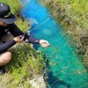 Ultra Clear DITCH Fishing In Deep Miami!