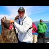Deep-Sea Fishing For Giant Halibut (SilverFox Charters)