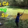 Fishing, hunting aggressive fish in Tra Su forest – by pou phung fishing