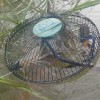 Prawn Fishing In The River, How To Make Electric Fan Cuard Prawn Trap – In Cambodia