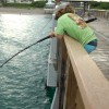 ALMOST Pulled in… UNSTOPPABLE Fish (Juno Pier Snook Fishing)