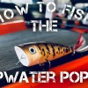 How to Fish a Topwater Popper – Bass Fishing