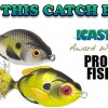 Lunkerhunt Prop Sunfish – Fishing Lure Unboxing and Review