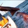 Fishermen Catching The Giant Squid On The Deep Sea Fishing