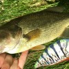 Fishing With the Crankbait Made With No Power Tools