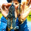 The BIGGEST BASS FISHING JIG You Will Ever See! Will It Catch Fish?