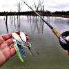 Spring Fishing Tips (Unexpected Catch)